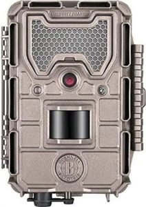 Best Trail Cameras in Tour Budget