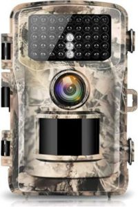 Top-Rated Trail Cameras