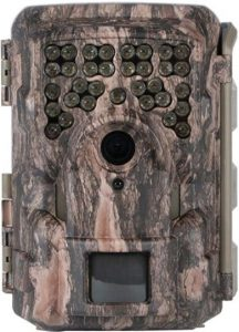 Best Trail Cameras for Night Time