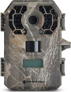 Best Trail Cameras For Clear Image