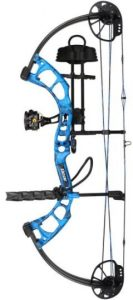 Best Compound Bow for Hunting You Will Ever Get