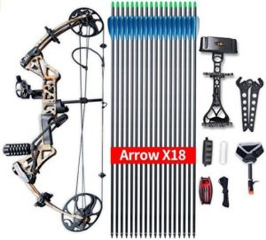 Top-Rated Compound Bow for Hunting
