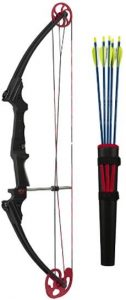 Best Compound Bow for All Season Hunting