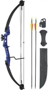 Best Ever Compound Bow for Hunting